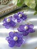 Real flower accessory*紫陽花とアコヤ真珠のピアス